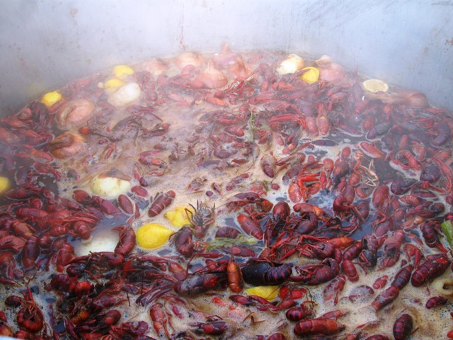 Boiled Crawfish, Lemons, Onions and Potatoes!